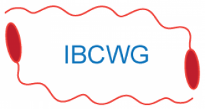 cropped-IBCWGnewlogo-e1436125638155.png